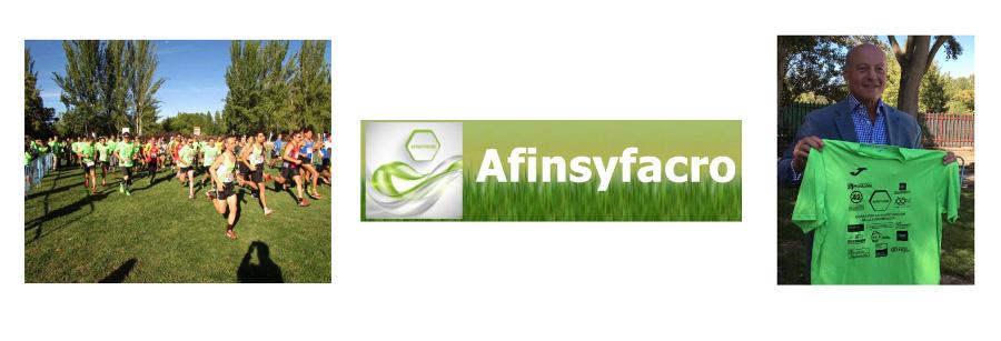 www.afinsyfacro.es